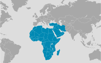 Middle East e Africa
